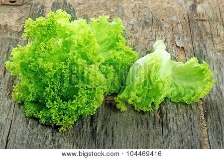 Fresh lettuce on rustic wooden background