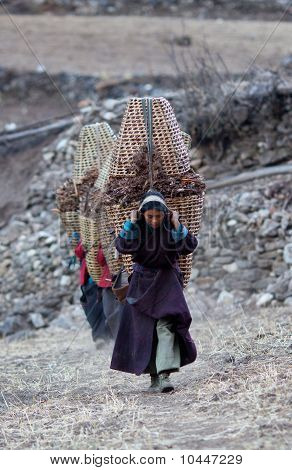 Tibetan Women In National Clothes With Baskets