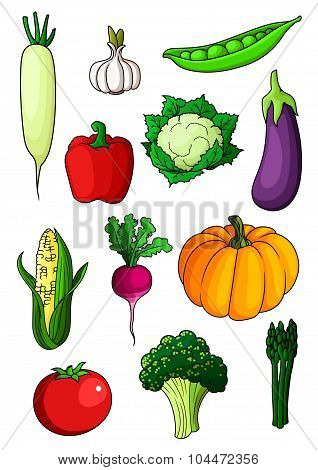 Assorted cartoon ripe vegetables on white