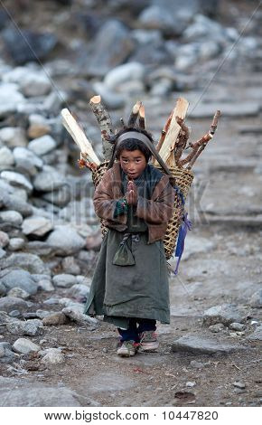 Tibetan Boy With Basket