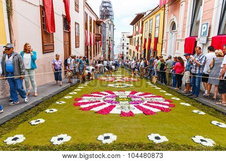 La Orotava, Tenerife, Spain - June 11, 2015: The Celebration Of Corpus Christi Is One Of The Most De