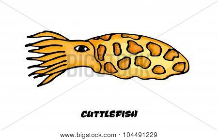 Isolated colorful cuttlefish on a white background. Vector illustration
