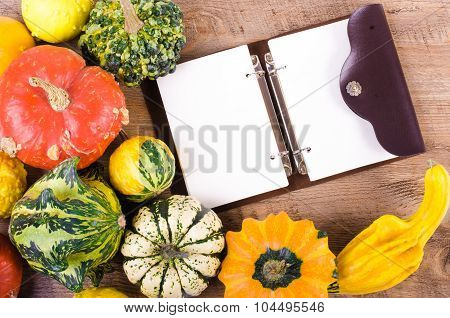 Small decor pumpkins on wooden background. Autumn frame