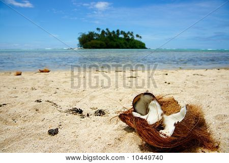Tropical beach scene.