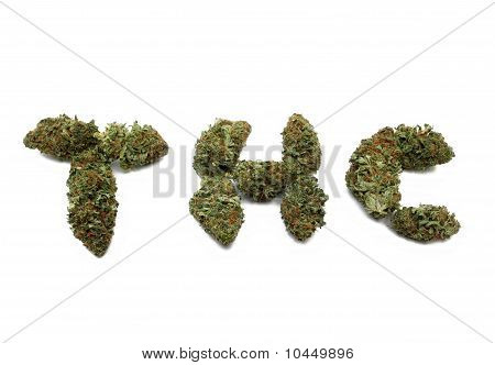 Marijuana Bud Spells Thc Isolated On White Background