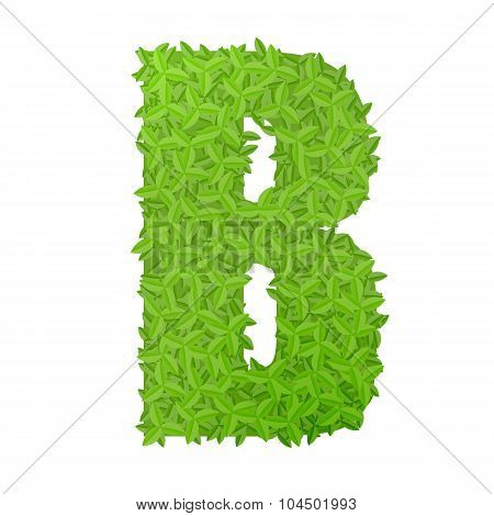 Uppecase letter B consisting of green leaves
