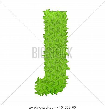 Uppecase letter J consisting of green leaves