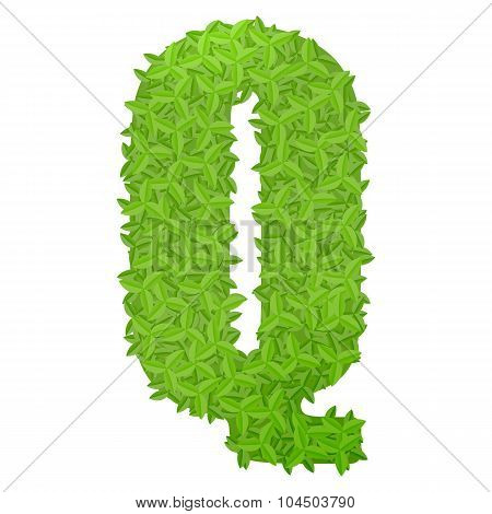 Uppecase letter Q consisting of green leaves