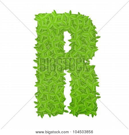 Uppecase letter R consisting of green leaves