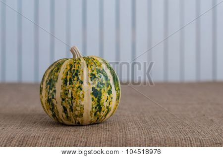 colorful pumpkin with stem and stripes on light wooden background. Empty space for textor postcard