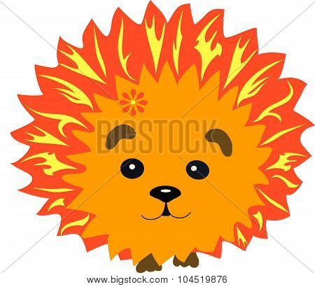fiery hedgehog