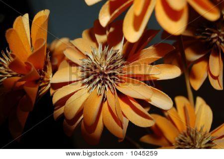 Woodenflowers