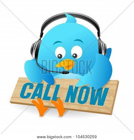 Blue Bird Call Now Sign