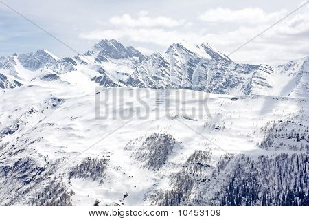 Alpine Slopes With Mountains And Larch Trees.