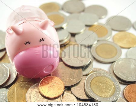 Piggy Save And Collected Coins Money