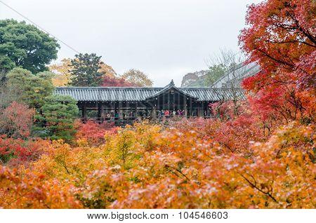 Autumn Foliage In Tofukuji Temple, Kyoto, Japan