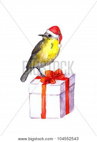 Bird in red santa hat on new year gift box with red bow.
