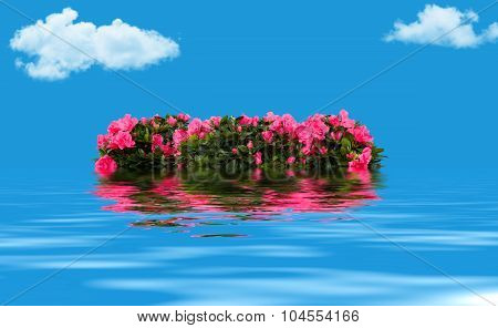 Floral wreath floating on the water