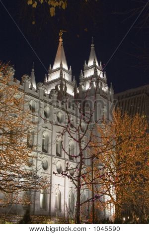 Salt Lake Temple South Side And Trees At Night
