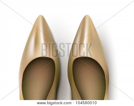 vector ladies shoes