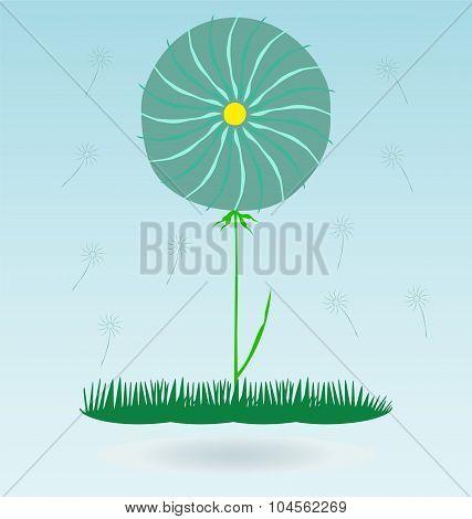 Dandelion, Botany Flower Blossom Fluffy, Grass Concept