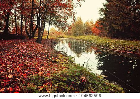 Autumn Rustic Landscape - Trees Near The River In Cloudy Weather