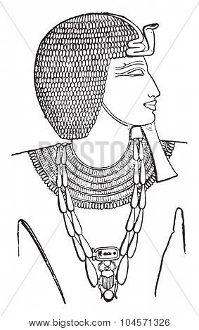 The collar on the neck of a Pharaoh, vintage engraved illustration. Private life of Ancient-Antique family-1881.