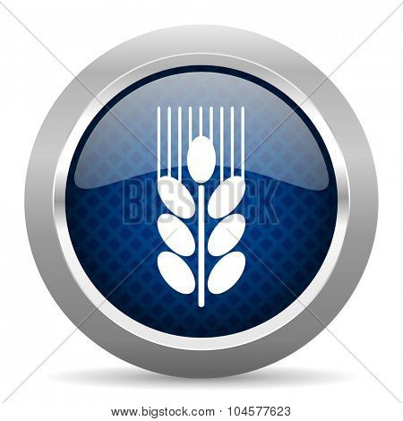 grain blue circle glossy web icon on white background, round button for internet and mobile app