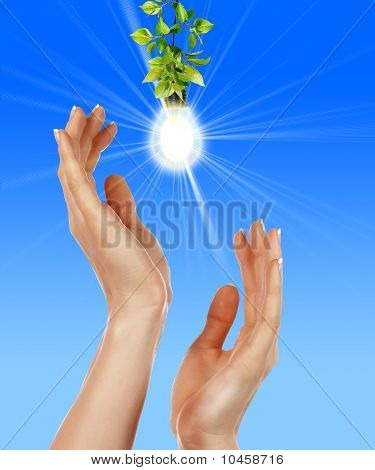 Arms and light bulbs