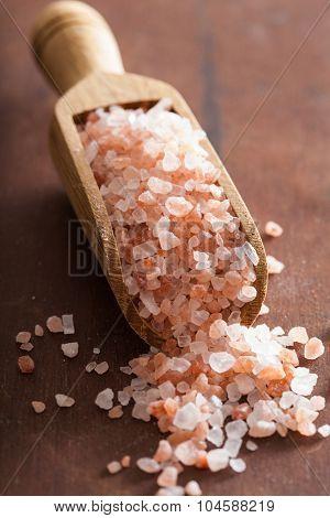 pink himalayan salt in scoop