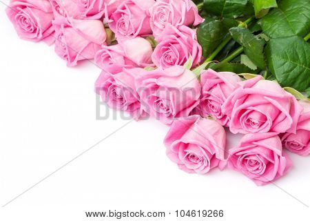 Valentines day background with pink roses. Isolated on white. Top view with copy space