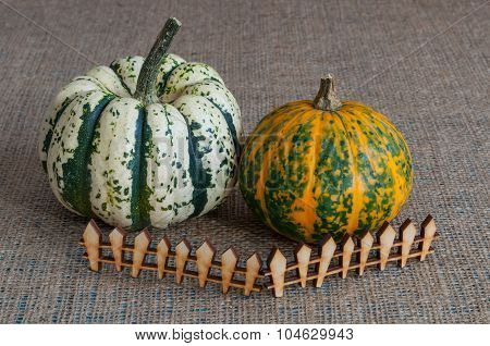 Miniature pumpkins behind toy wooden fence. The concept of farm and household. space for a text in r