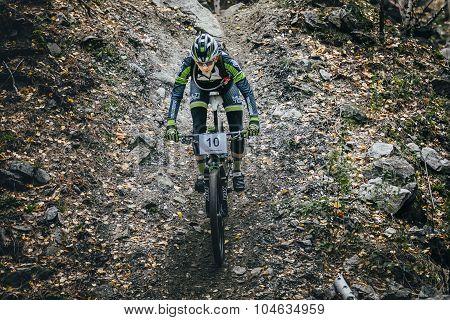 top view racer biker riding through woods