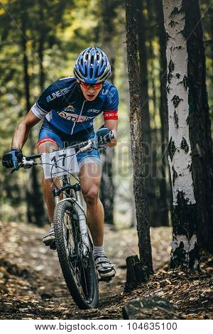 racer cyclist rides through forest, rising in a slight slope