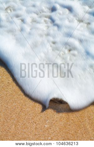 Sand beach close up photo , nice background for your projects