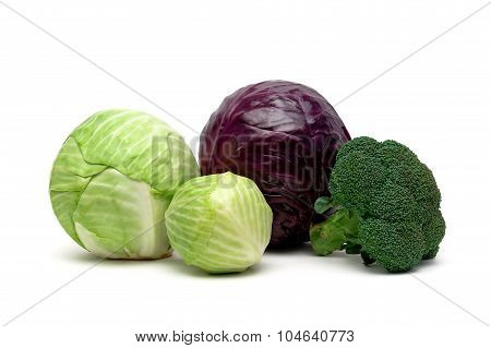 Various Types Of Cabbage Isolated On A White Background