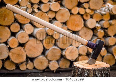 Massive axe stuck in a birch stub ** Note: Shallow depth of field