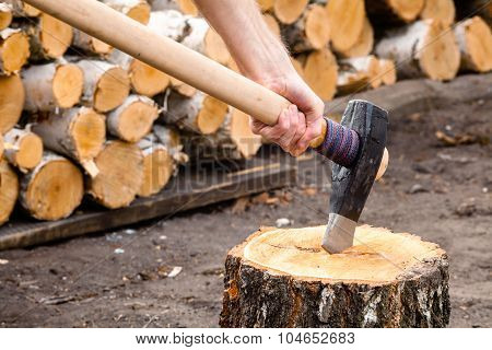 Massive axe with mens hand stuck in a birch stub