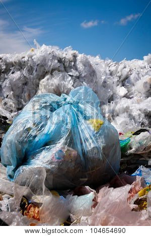 Waste Recycling - Stock Image