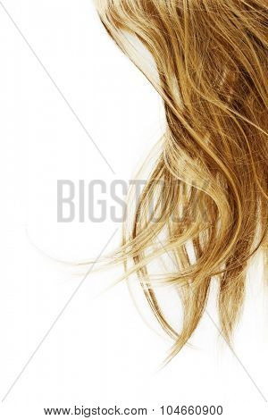 Blonde hair on white background