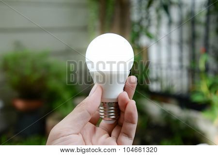 Led Bulb With Lighting - New Technology Of Energy