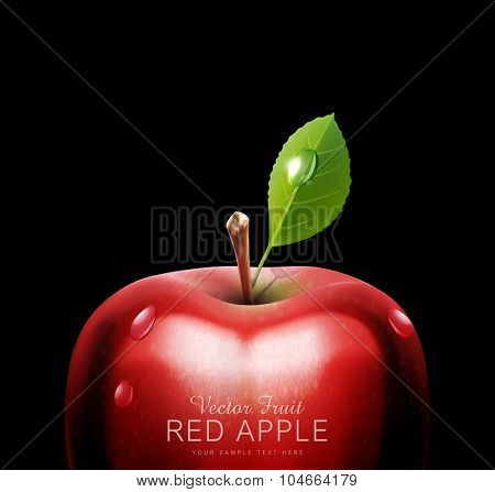 vector red apple, close-up, with drops on a black background