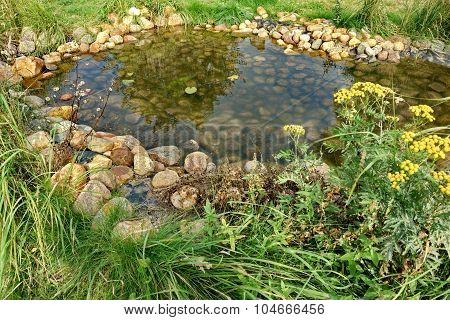 Small Artificial Decorative Pond On The Backyard In Summer