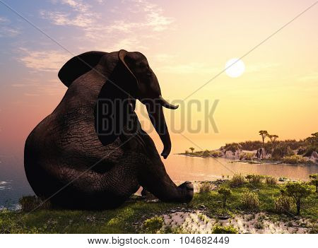 Elephant sitting on the grass.