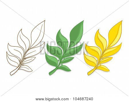 Branches of laurel vector illustration