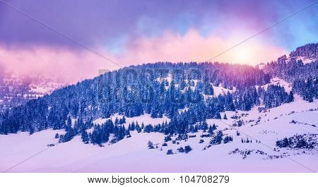 Winter mountains landscape, beautiful pink sunset over mountainous coniferous forest, peaceful panoramic view, beauty of wintertime nature