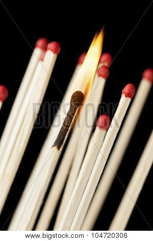 burnout concept. burning match in front of unlit matches, black background