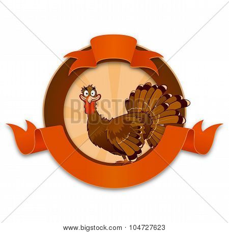Thanksgiving Turkey Cartoon Character