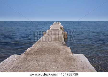 Concrete Dock With Seascape And Some Seagulls