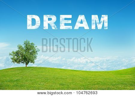 Landscape with dream word